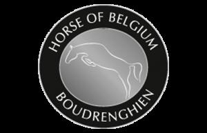 horseofbelgium1